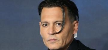 """Did Johnny Depp get Amber Heard blacklisted from Warner Bros films?"" links"