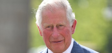 Prince Charles 'couldn't be more delighted' about the birth of Baby Sussex