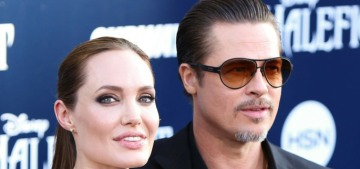Brad Pitt wants the court to fine Angelina if she doesn't sign the divorce papers?