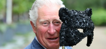 Fifty Shades of Wales: Prince Charles was delighted at his masquerade ball