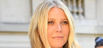 Gwyneth Paltrow has no idea who her costar Sebastian Stan is