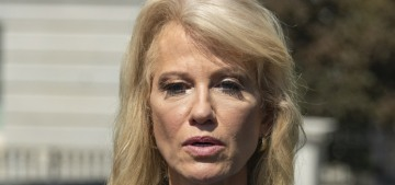 Kellyanne Conway asks journo 'what's your ethnicity?' when asked about Trump's racism