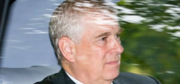 The Duke of York's 'friends' are making absurdist arguments to defend him