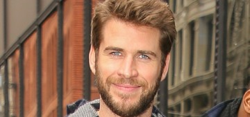 Liam Hemsworth is 'definitely interested' in Maddison Brown, but their thing is very 'new'