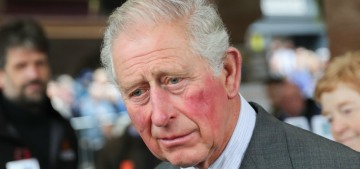 Prince Charles posted his first message to Instagram, thirst-trap to follow shortly