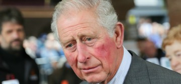 Prince Charles might try to force the Queen to retire at the age of 95?