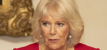 Duchess Camilla turned Charles from a 'morose' & sour prince to a happy future king