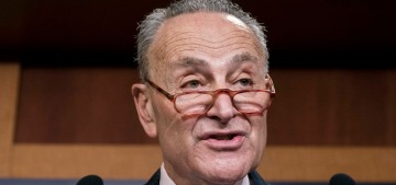 Sen. Chuck Schumer admits that he spent $8600 on New York cheesecake
