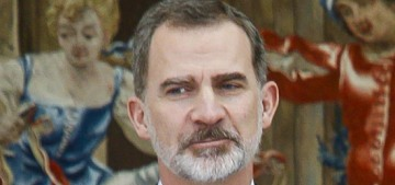 Spain's King Felipe stripped his father of his annual £175,000 stipend from the state