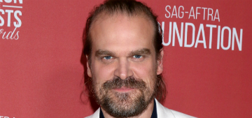 David Harbour gave out his phone number to fans, will he text directly back?
