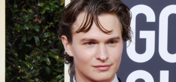 Ansel Elgort's Instagram thirst-trap raised thousands of dollars for charity