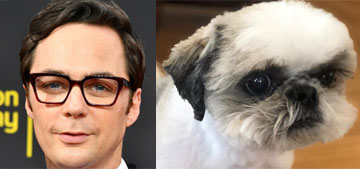 Jim Parsons' little blind dog gets lost in their new place and has to woof for help