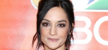 Archie Panjabi 'completely understands' why people still ask about 'Good Wife' drama