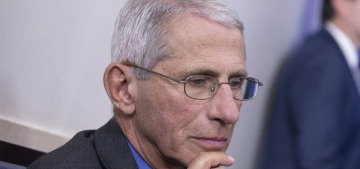 Dr. Fauci: Re-opening the economy too quickly could 'trigger an outbreak'