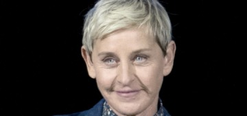 Ellen DeGeneres thought all of the criticism was 'just sour grapes from a few haters'