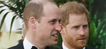 Prince William & Harry are splitting the remaining money from the Diana fund