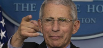 The White House is trying to sideline & discredit Dr. Anthony Fauci now