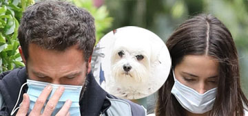 Ben Affleck and Ana de Armas reunited on Friday, walked dogs & went to lunch