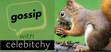 'Gossip with Celebitchy' podcast #70: The Great British Bake Off & we hate squirrels