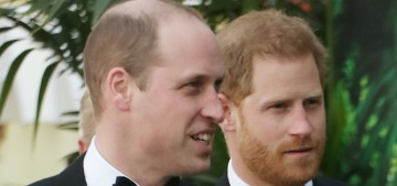 Prince Harry believes 'palace courtiers are still speaking against' him to the media