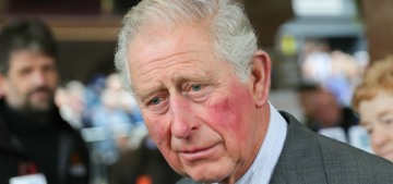 Prince Charles misses Archie: 'He has missed much of his development'