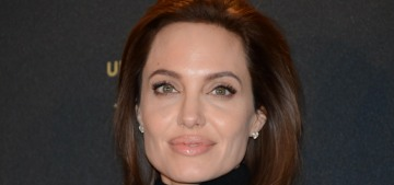 Angelina Jolie set to direct the Tom Hardy-produced bio-pic 'Unreasonable Behaviour'