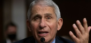 Dr. Anthony Fauci on his newfound fame: 'It's surrealistic and… nice & amusing'