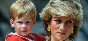 Prince Harry believes his mother 'would feel very angry with how this has panned out'