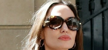 How much money have Angelina Jolie & Brad Pitt already spent on their divorce?