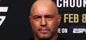 Joe Rogan doesn't think 'healthy' 21-year-olds should get the Covid vaccine