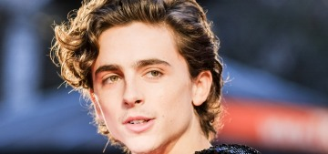 Timothee Chalamet cast as a young Willy Wonka in an 'origin story' film: hate it?