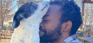 William Jackson Harper hired a pet psychic for his dog and it kind of worked