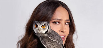 Salma Hayek thinks it's funny when her owl lands on people and scares them