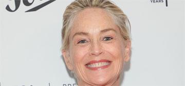 Sharon Stone: 'Viola Davis is every bit the actress Meryl Streep is'