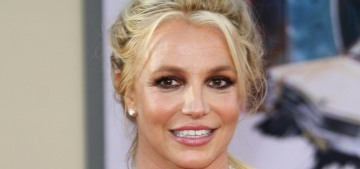 Questions arise about the negligence of Britney Spears' lawyer Samuel D. Ingham