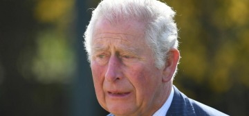 Prince Charles 'would fall in line' over the DoE title if the Queen had a word