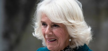 Why is Prince Charles so worried that Prince Harry's memoir will slam Camilla?