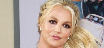 Britney Spears' housekeeper took her dogs away from her when the dogs got sick