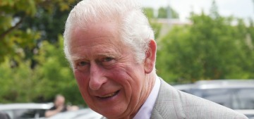 Prince Charles has been caught up in yet another cash-for-access scheme
