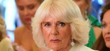 Duchess Camilla named the patron of a Nigerian charity working on assault, abuse