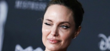 Angelina Jolie was legally allowed to sell her shares in the Miraval estate, lol