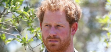 Prince Harry coauthors a WaPo op-ed on protecting the Okavango delta from drilling
