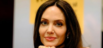 Angelina Jolie wrote her book to help the youths fight for their rights globally