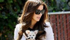 Did Kate Beckinsale choke her tiny, adorable little dog?