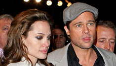 Brad Pitt pissed at Angelina Jolie for wanting to work with ex husband