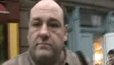 Video of James Gandolfini assaulting amateur photographer