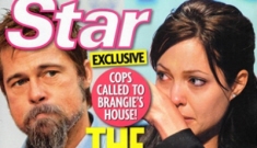 Brad & Angelina didn't fight in front of George Clooney & Elisabetta Canalis