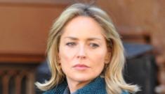 Will Sharon Stone ruin Law & Order: SVU?