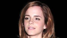 Emma Watson's leather & lace dress: tacky or high fashion?