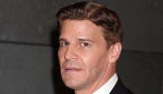 David Boreanaz isn't talking about the mistress he shared with Tiger Woods